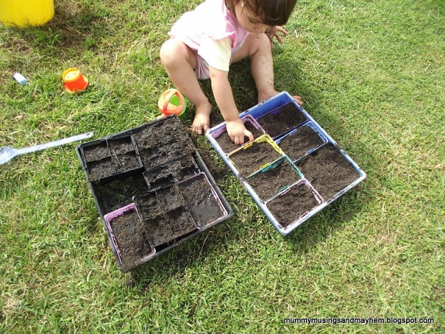 Twin Seed Planting…