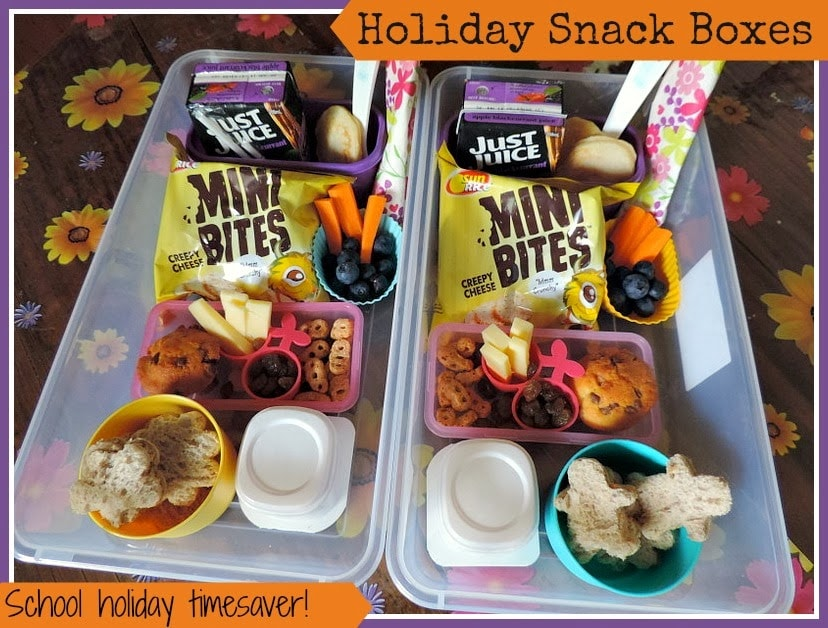 Holiday Snack Box Ideas for Kids!