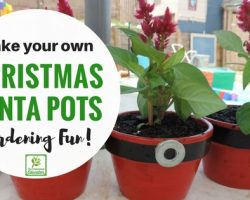 Santa Flower Pots…Easy DIY Gifts for Family!