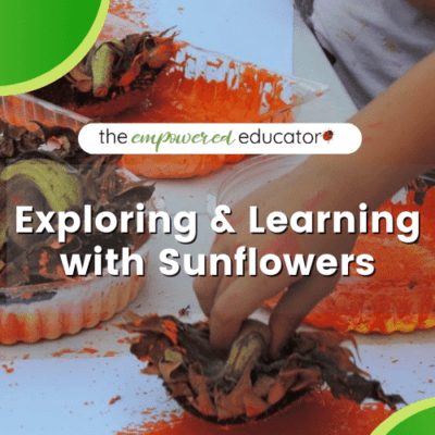 Sunflowers: A Journey Through Sustainability & Creativity.