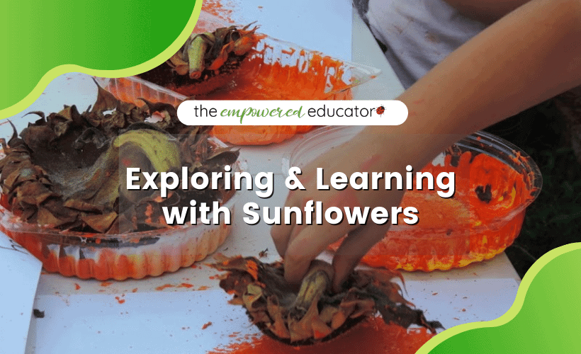 exploring and learning with sunflowers