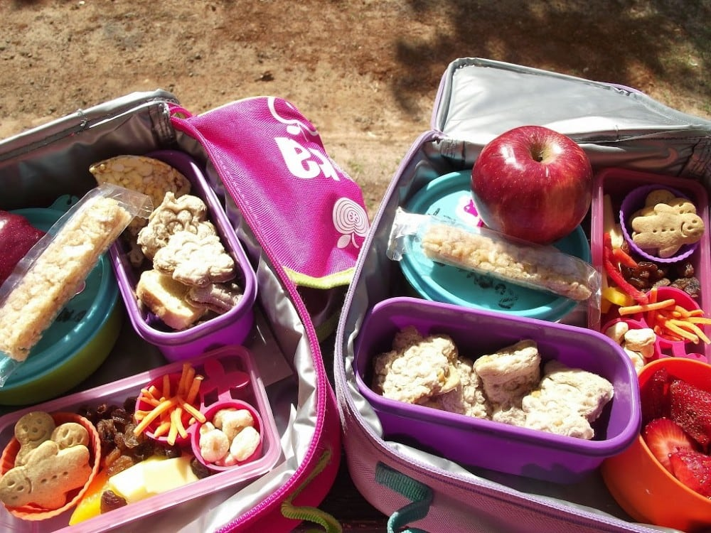 Lunchbox Ideas for Toddlers & Little Bellies Snack Giveaway!!