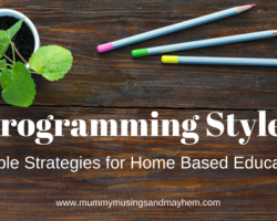 Documenting in Home/Family Day Care Part 2 – Finding your programming style.