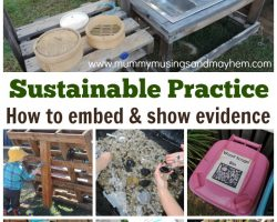 Sustainability – How can Early Years Educators show evidence of embedded practice?