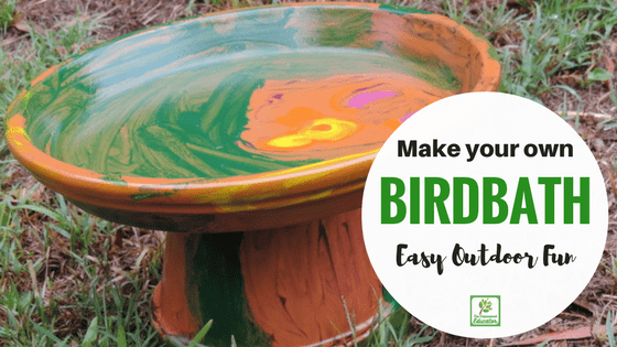 Make your own Birdbath!