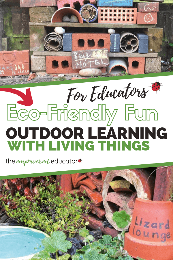 Encourage outdoor learning with living things using these simple project and play ideas for educators, teachers and parents!