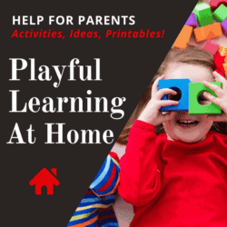 Playful Learning Ideas for Home