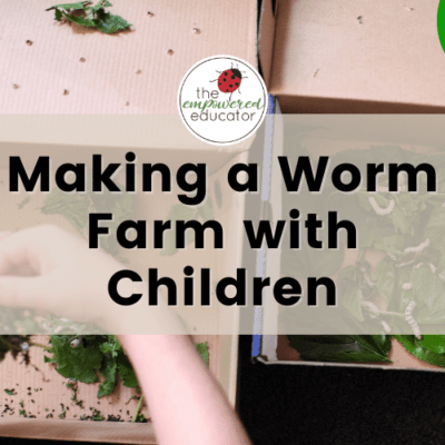 Making A Worm Farm With Children – Inspiration & Ideas