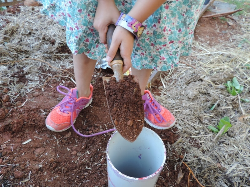 The Empowered Educator show us why making a Worm Farm with children is simple to do yet provides numerous early learning outcomes. It's also a whole lot of fun!