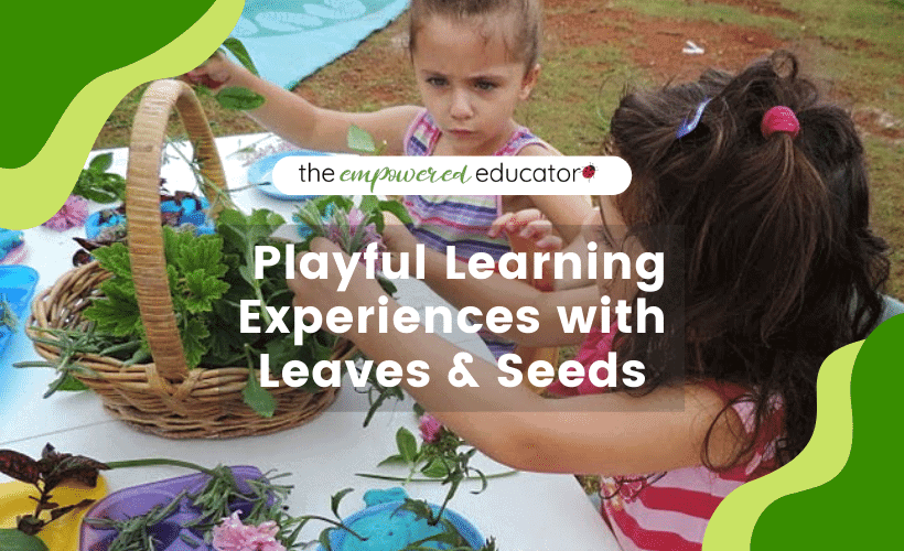 Playful Learning Experiences with Leaves and Seeds