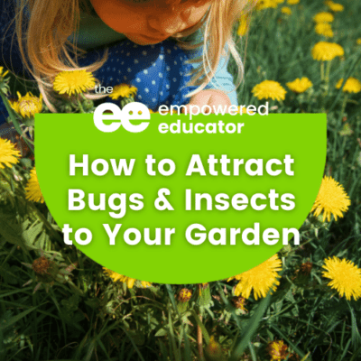 How to encourage outdoor learning with living things.