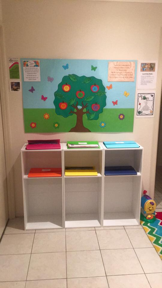 behind the scenes look into real educators early learning spaces