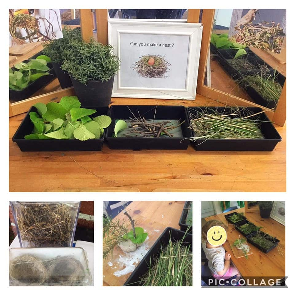 Eco Friendly Fun In Early Learning